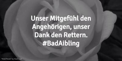 #BadAibling 02.2016